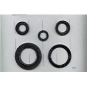 BSA A50/A65 Oil Seal Kit