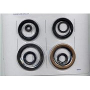 BSA A75 Triumph T150, T160 Gearbox Oil Seal Kit 4 & 5 Speed for Classic Motorcycle